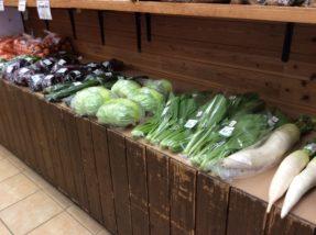 新鮮夏野菜ズラリ