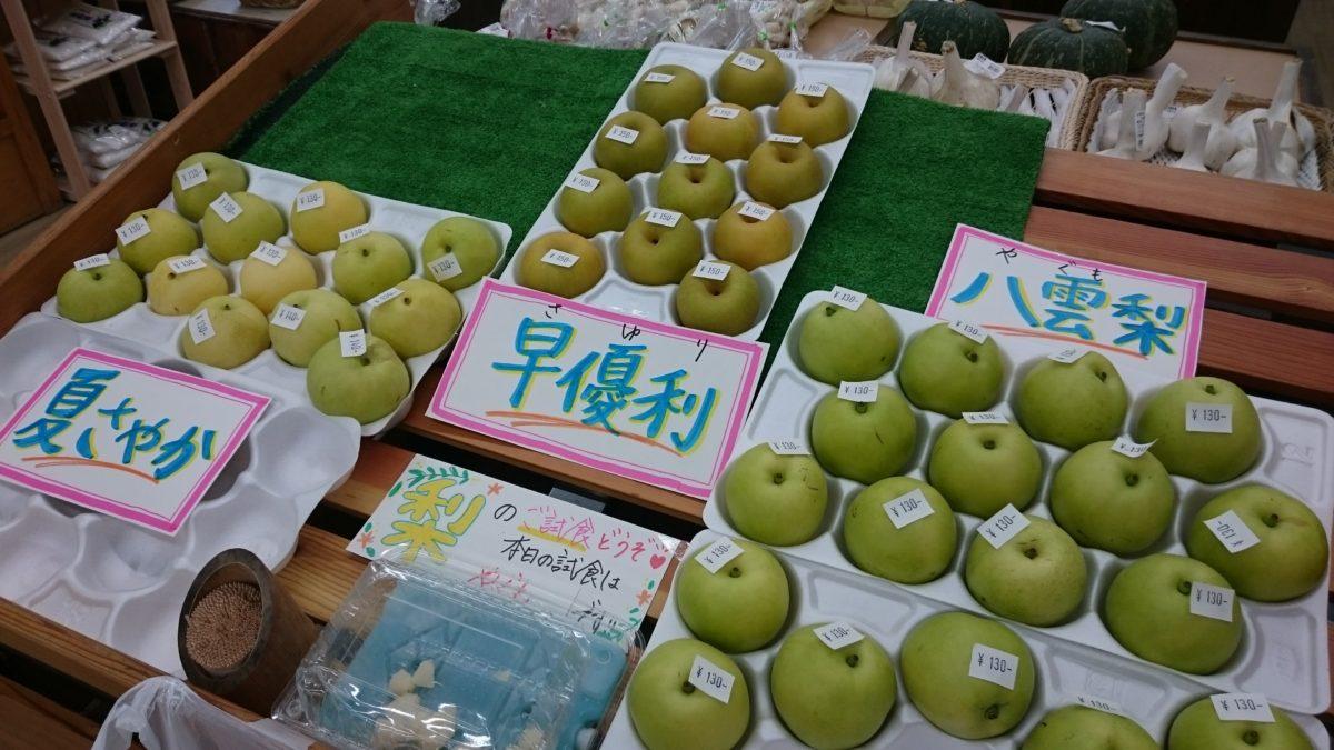 鳥取産 梨が始まりました 道の駅みなみ波賀